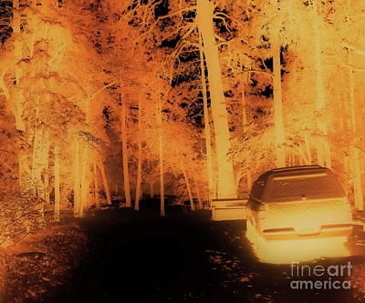 Photograph - Halloween Campground by Tim Richards