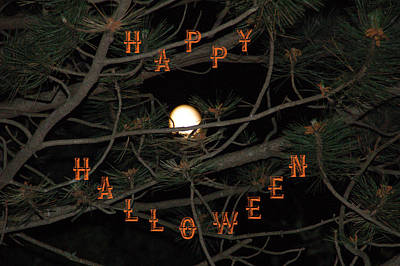Photograph - Halloween Card by Aimee L Maher Photography and Art Visit ALMGallerydotcom