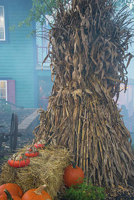 Photograph - Halloween Decor by Pamela Williams