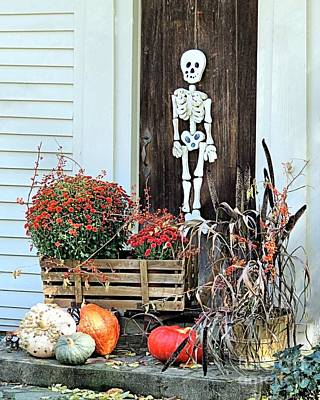 Photograph - Halloween Decorations by Janice Drew
