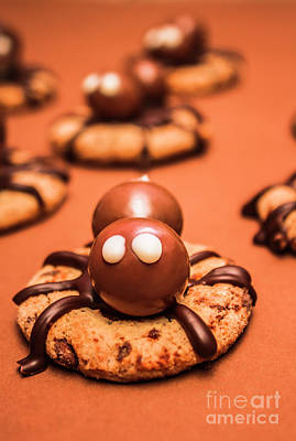 Homemade Photograph - Halloween Homemade Cookie Spiders by Jorgo Photography - Wall Art Gallery
