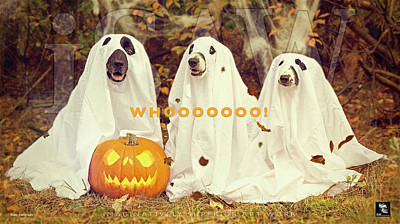 Photograph - Halloween Hounds by ISAW Gallery