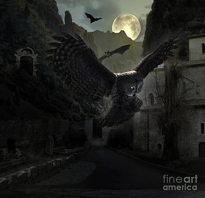 Spooky Photograph - Halloween Owl by Ezeepics