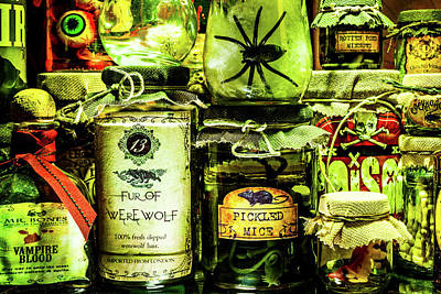 Photograph - Halloween Potions by SR Green
