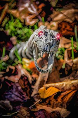 Photograph - Halloween Snake Eyes by LeeAnn McLaneGoetz McLaneGoetzStudioLLCcom