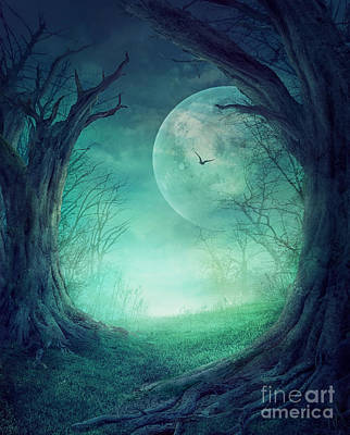 Graveyard Digital Art - Halloween Spooky Forest by Mythja  Photography