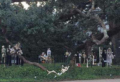 Photograph - Halloween Yard Party by Cindy Croal