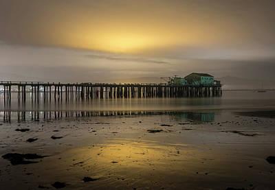 Photograph - Halo by Alex Lapidus
