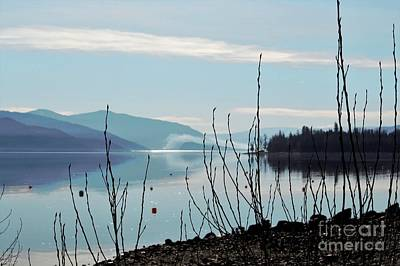 Art Print featuring the photograph Halo On Copper Island by Victor K