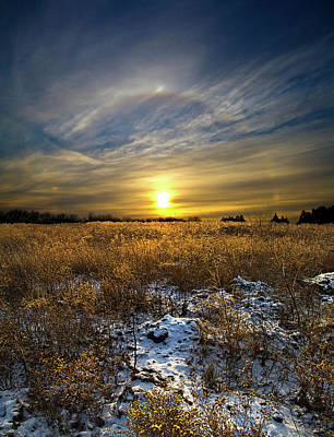 Natur Photograph - Halo by Phil Koch