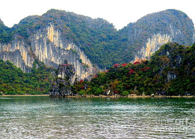 Photograph - Halong Bay 5 by Randall Weidner