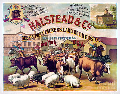 Refiner Mixed Media - Halstead And C Beef And Pork Packers Vintage Poster by Carsten Reisinger