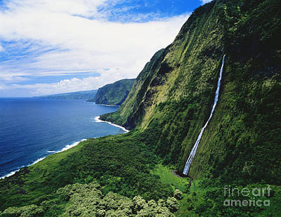 Photograph - Hamakua Coast Waterfalls by Greg Vaughn - Printscapes
