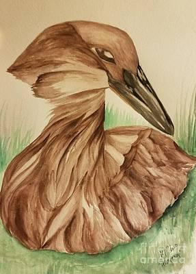 Painting - Hamerkop by Maria Urso