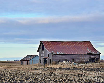 Photograph - Hamilton County Barn And Shed by Kathy M Krause