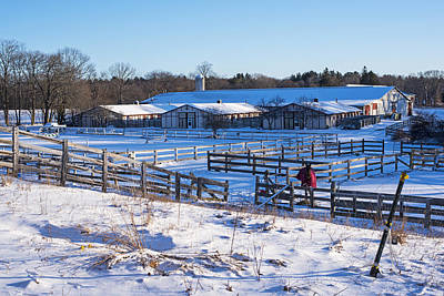 Photograph - Hamilton Ma Equestrian Farm Blanket Of Winter Snow by Toby McGuire