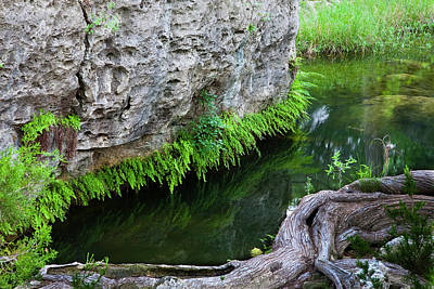 Hamilton Pool Photograph - Hamilton Pool Preserve by Mark Weaver