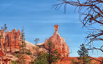 Photograph - Hammerhead Hoodoo At Bryce Canyon by John M Bailey