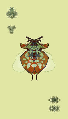 Digital Art - Hammerhead Ladybug Specimen by Kristin Doner