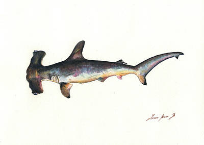 Reef Shark Wall Art - Painting - Hammerhead Shark by Juan Bosco