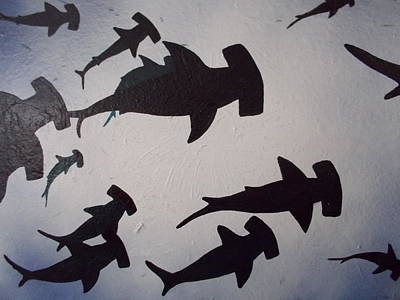 Hammerhead Sharks Original