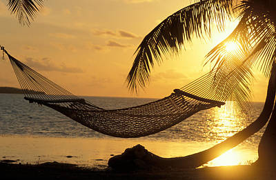 Hammock At Sunset Art Print by Panoramic Images