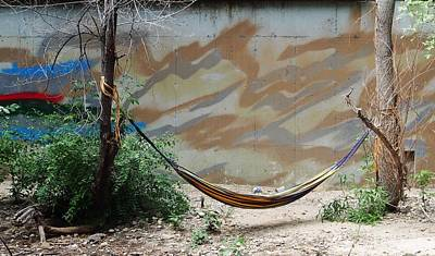 Photograph - Hammock by David Pantuso
