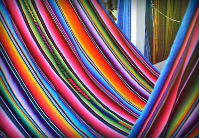 Photograph - Hammock Hue by JAMART Photography