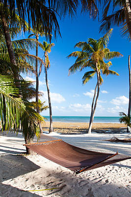 Hammock In Paradise Art Print by Adam Pender