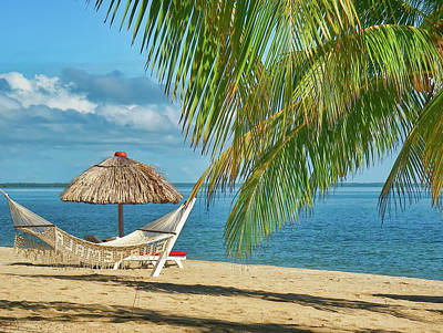 Photograph - Hammock On A Beach In Belize by Waterdancer