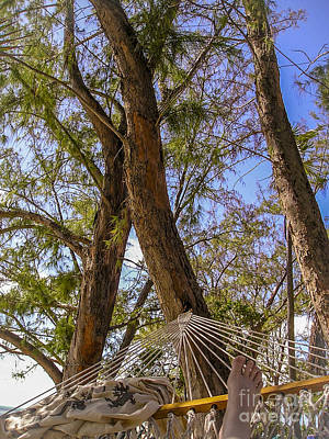 Water Droplets Sharon Johnstone - Hammock Time by Nancy L Marshall