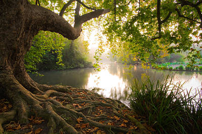 Photograph - Hampden Park Pond by Will Gudgeon