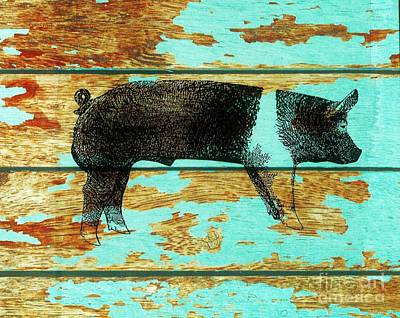 Drawing - Hampshire Boar 1 by Larry Campbell