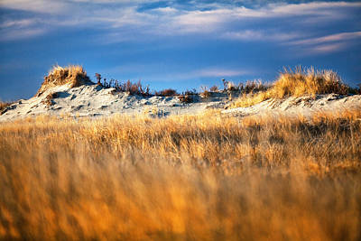 Hampton Beach Sand Dunes Art Print by Eric Gendron