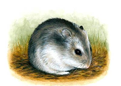 Hamster Drawing - Hamster 25 by Lucie Dumas