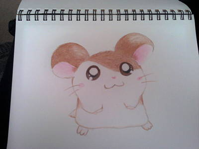 Hamster Drawing - Hamtaro by Raquel Gutierrez