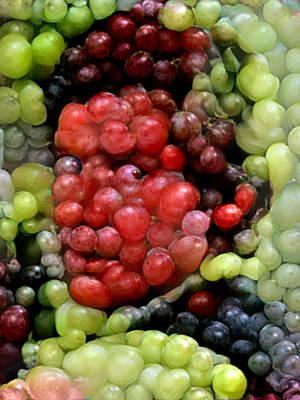 Photograph - Han Solo In Grapes by Paul Van Scott