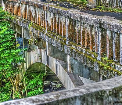 Photograph - Hana Highway Bridge by Nadine Berg
