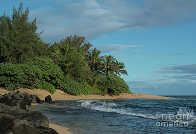 Photograph - Hanalei Colony by Loriannah Hespe