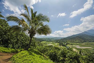 Photograph - Hanalei Overlook by Jon Glaser