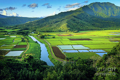 Kauai Photograph - Hanalei Valley by Inge Johnsson