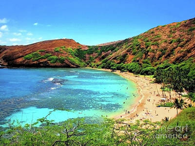 Photograph - Hanauma Bay Nature Preserve by Kristine Merc
