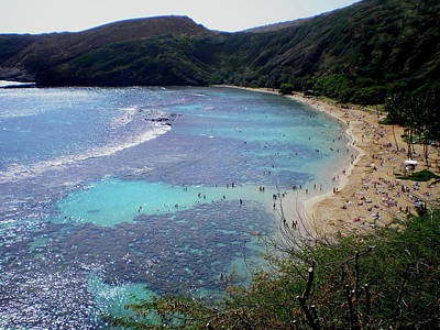 Photograph - Hanauma Bay by Trent Mallett