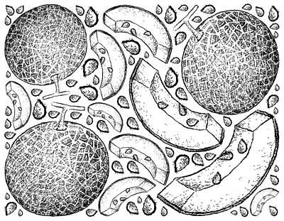 Katharine Hepburn - Hand Drawn Background of Fresh Melon Fruit by Iam Nee