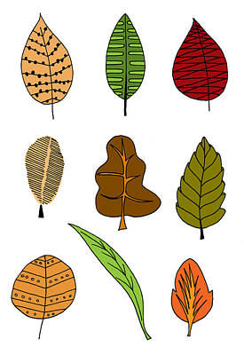 Whimsical Drawings Photograph - Hand Drawn Ilustration Of Various Types Of Autumn Leaf by Matthew Gibson