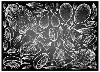 Western Art - Hand Drawn of Ambarella and Horned Melon on Chalkboard Background by Iam Nee