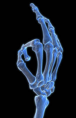 Biomedical Illustration Photograph - Hand Gesture by MedicalRF.com