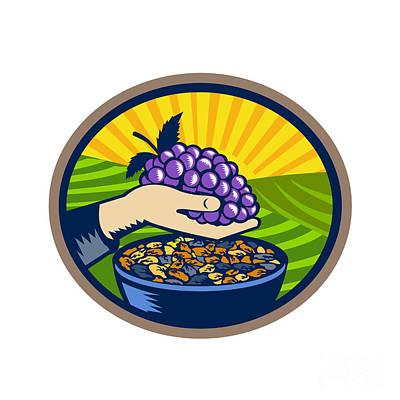 Vineyard Digital Art - Hand Holding Grapes Raisins Oval Woodcut by Aloysius Patrimonio