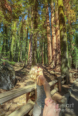 Photograph - Hand In Hand Sequoia Forest by Benny Marty