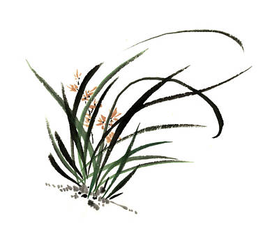 Buddha Sketch Drawing - Hand Painted Chinese Painting Ink Orchids by Chun Su